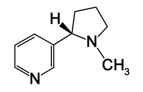 salt nic chemical structure